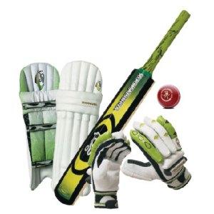 cricket312